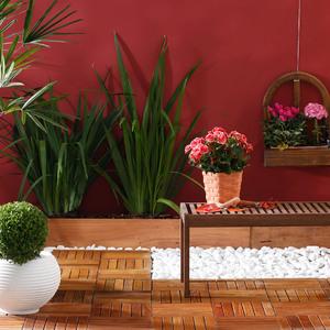 Como escolher Plantas e Flores