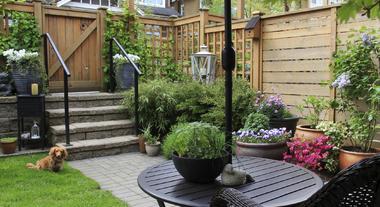 Aproveite o verão para deixar seu jardim impecável