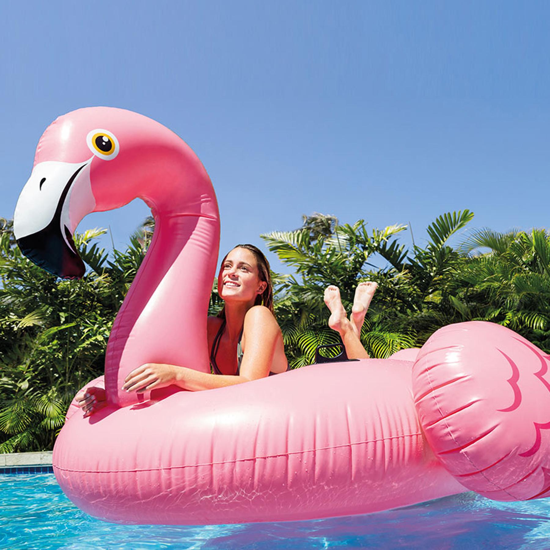 Boias gigantes para piscina veja 4 modelos divertidos em alta - Modelos de piscinas fotos ...
