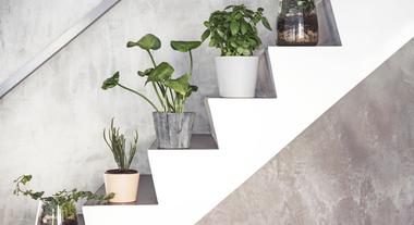 Como decorar escadas: com plantas, fotos, pinturas e até quadros