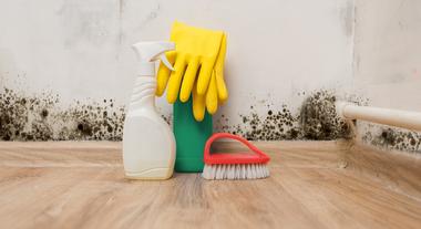 Como eliminar mofo da parede e do armário de forma simples