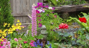 Cuide bem do seu jardim com mangueiras e acessórios