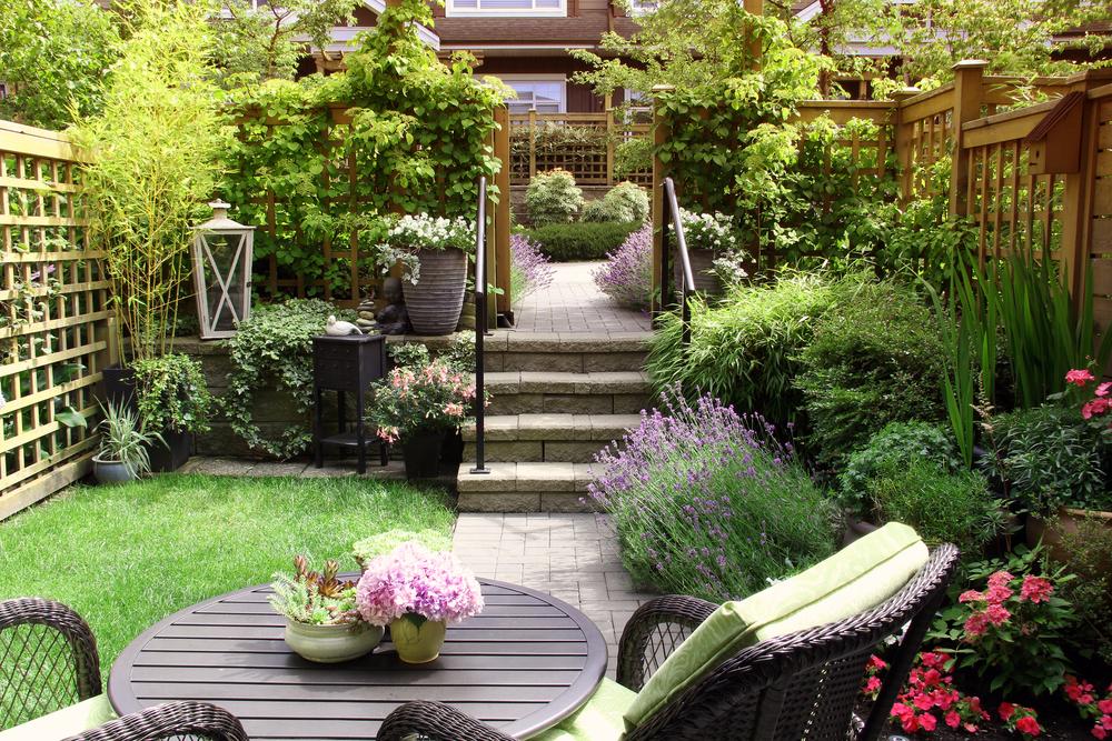 As diferen as entre treli as cercas e biombos para seu jardim - Biombos en leroy merlin ...