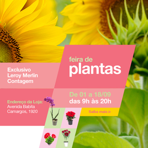 Feira de plantas na loja de contagem leroy merlin for Plantas decorativas en leroy merlin