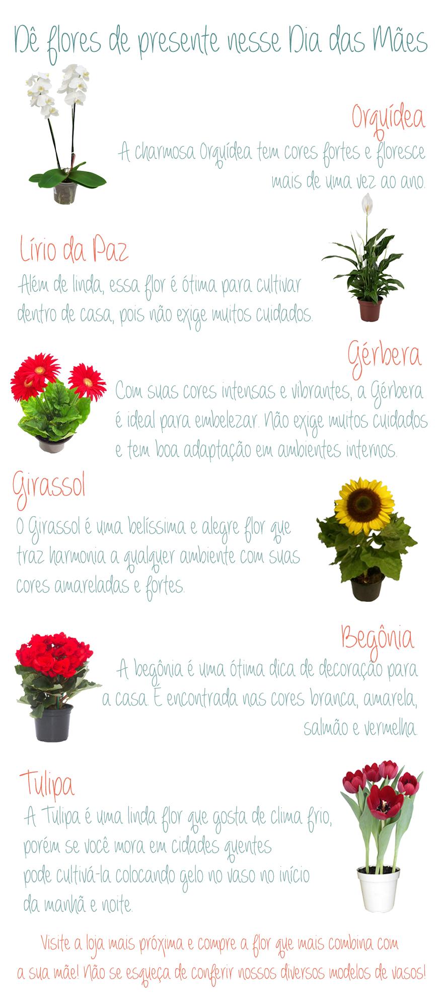 Flores naturais na Leroy Merlin