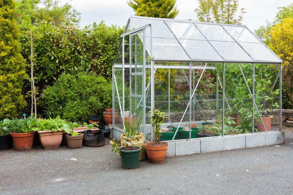 Aprenda a montar uma estufa de jardim para proteger as plantas - Estufas de parafina leroy merlin ...