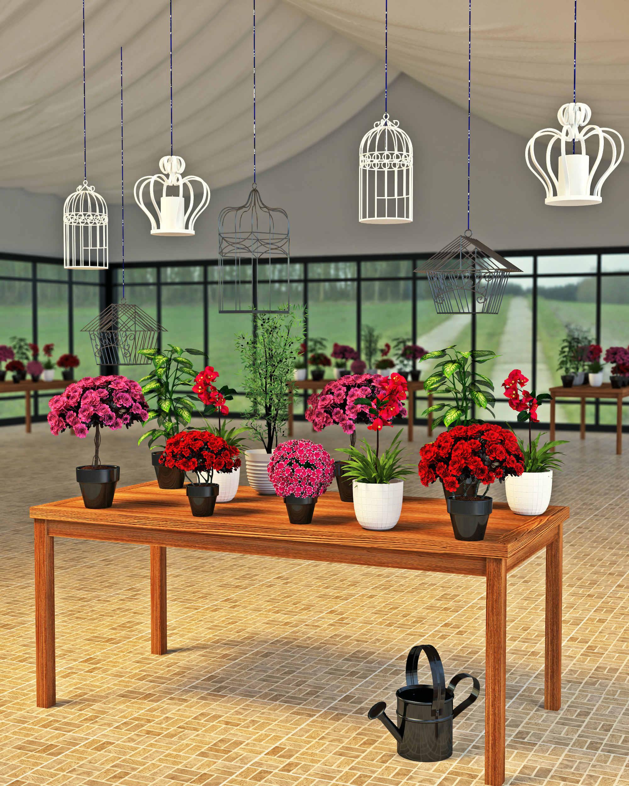 Descubra como montar uma estufa de jardim leroy merlin for Plantas decorativas en leroy merlin