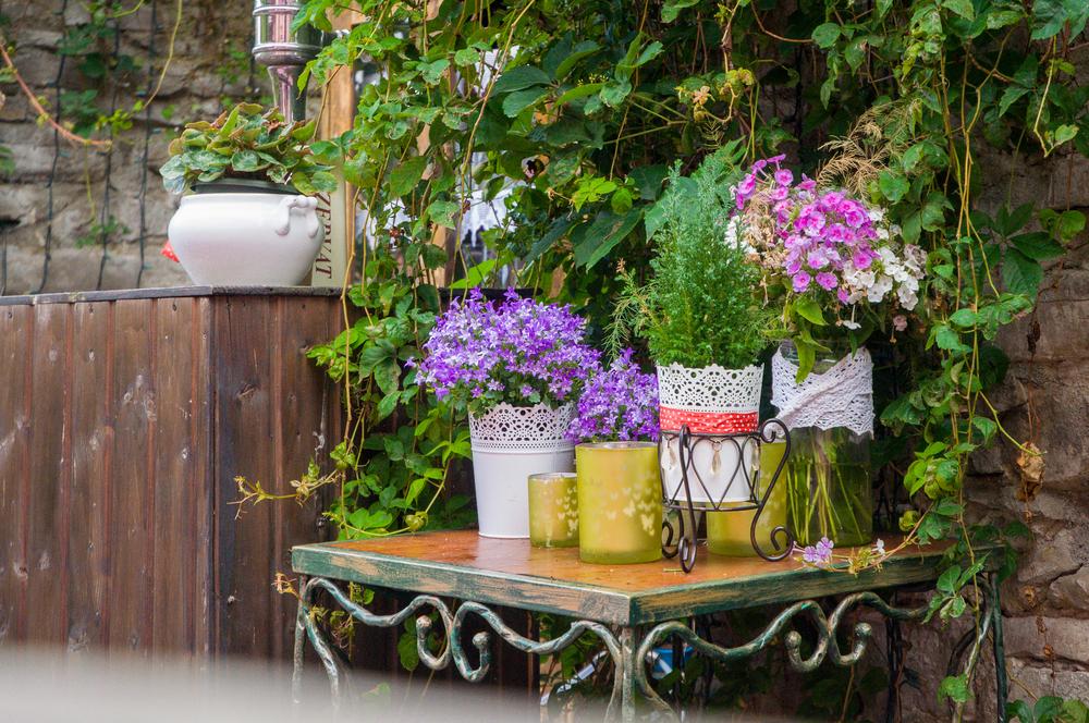 Jardins pequenos decorações com pedras flores folhagens baratas -> Decoração De Jardins Com Pedras E Flores