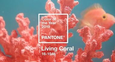 da87c82a5 Living Coral: como usar a cor de 2019 da Pantone na decoração