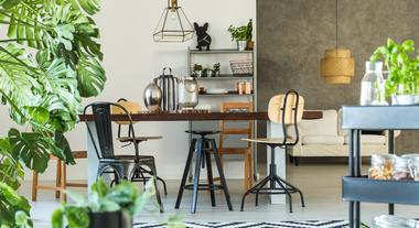 Plantas para cozinha são a mais nova febre na hora de decorar esse cômodo da casa: veja inspirações