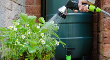 Sistema de captação de água de chuva é solução sustentável e econômica