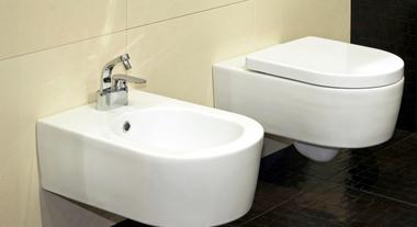 Tenha um aliado a mais na higiene diária. Veja os bidês!