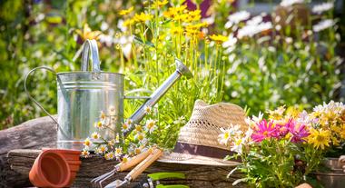 Top 5 truques de decoração de jardim