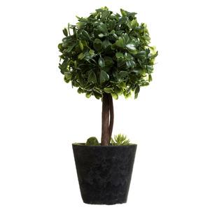 Arranjo Buxinho Pequeno Verde 6cm