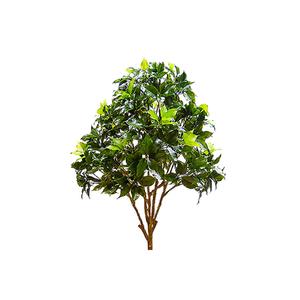 Árvore Ficus 675 Folhas 66cm