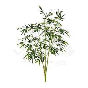 Bamboo Torcido com Folha Verde 62cm Florarte