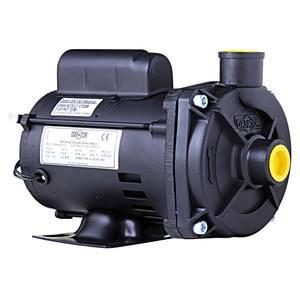 Bomba Centrifuga Nylon Elétrica 180w 220v Rotor Fechado Mec 2 Pólos 3450 Rpm com Eixo Aço Inox Ip21 271x156x173,50mm Dancor