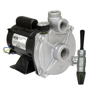 Bomba EP-2-0 1Cv 220v Dancor