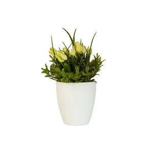 Buqu tulipas vaso 16cm leroy merlin for Vaso terracotta leroy merlin