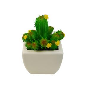 Cactus Verde Vaso 10cm