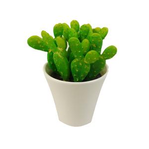 Cactus Verde Vaso 13cm