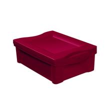 Caixa Organizadora 14,4x30,5x42,5cm 13,5L Vermelha Radical Color