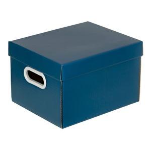 Caixa Organizadora Papelão Azul 18x23x28cm Mini Boxgraphia