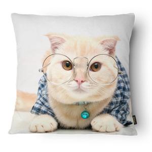 Capa de Almofada Gato Óculos Branca 43x43cm
