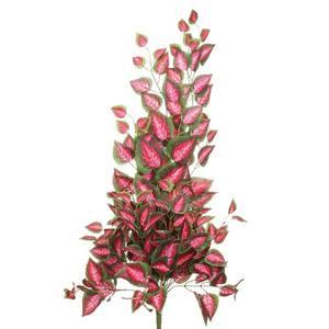 Coleus Pendurar Verde/Vinho 95cm Flor Arte