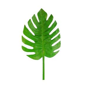 Folhagem Costela de Adão Verde Haste 72cm