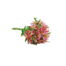 Flor de Corte Alstromeria 6 hastes Maço