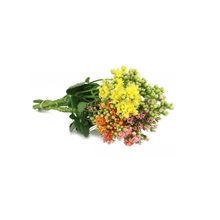 Flor de Corte Kalanchoe Dobrado 3 a 5 Hastes Maço