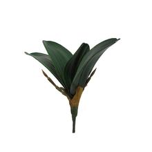 Folha de Orquídea 19cm