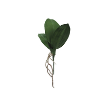 Folha de Orquídea 31cm