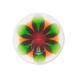 Gancho Nano sucção 5kg Plástico Verde e Laranja Pyno