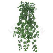Gerânio Verde Pendente 80cm