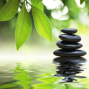 Gravur Zen Pedras e Folhas 70x70cm