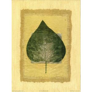 Gravura Verde Simples 24x18cm