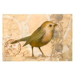 Gravura 20x30cm Pássaro Canário Belga Importado
