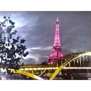 Gravura Pink Eiffel 40x50cm