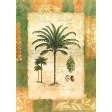 Gravura Palmeira 70x50cm