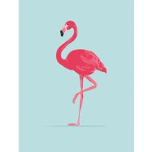 Gravura Blue Flamingo 40x30cm