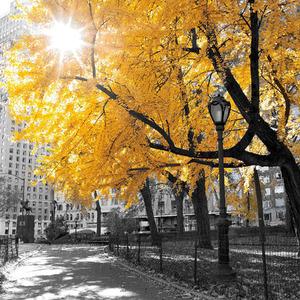 Gravura Outono Amarelo 97x97cm