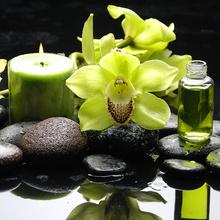 Gravura Zen Flor e Vela Amarelo 30x30cm