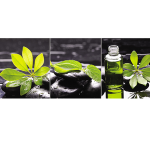 Gravura Zen Folhas Verde e Amarelo 50x20cm