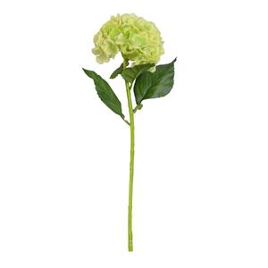 Hortência Verde Haste 55cm