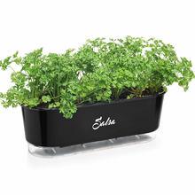 Jardineira Autoirrigável Raiz - Gourmet - Preto - Salsa