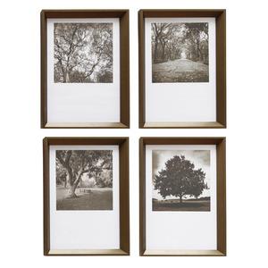 Kit De Quadros árvores Preto E Branco Inspire