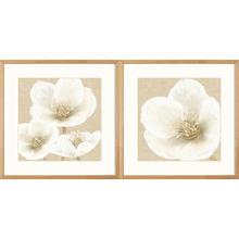 Kit de Quadros Classic Flowers 39x39 2 peças