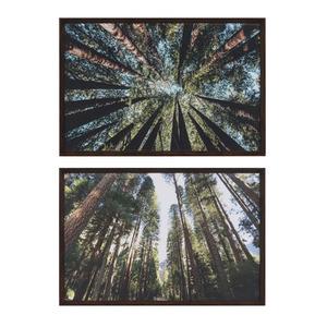 Kit De Quadros Mata Perspectiva Verde Inspire